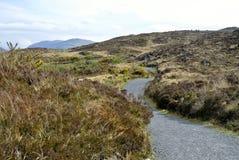 irland Stockbilder