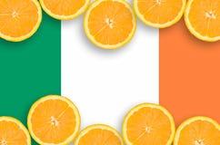 Irland flagga i citrusfruktskivahorisontalram royaltyfri bild