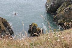 Irland - howth Arkivbilder