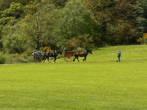 irland Killarney - Cill Airne Stockbild