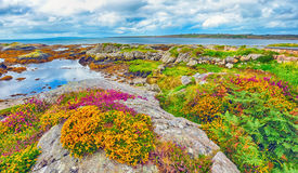 Irland-Landschafthdr Stockfotos