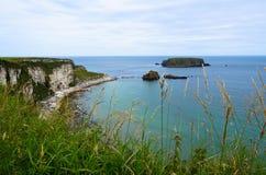 Irland landskap. Fotografering för Bildbyråer