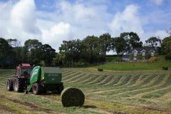 Irland landskap, hö, bana, stjälk, banor, gräsplan, äng Royaltyfri Foto