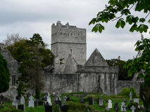 irland Nationalpark Killarneys Lizenzfreies Stockbild
