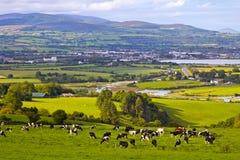 Irlanda imagen de archivo libre de regalías