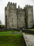 irlanda Castillo de Bunratty y parque de la gente imagen de archivo libre de regalías