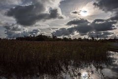 Irlanda de Ennell do Lough Imagens de Stock Royalty Free
