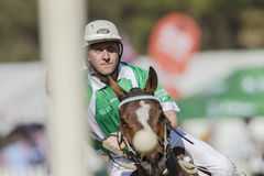 Irlanda dos cavalos do campeonato do mundo de PoloCrosse Imagens de Stock Royalty Free