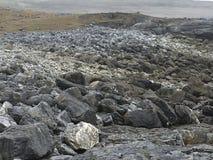 Irlanda ocidental Fotografia de Stock