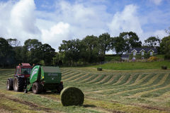 Irlanda, paisaje, heno, trayectoria, tallo, trayectorias, verde, prado Foto de archivo libre de regalías