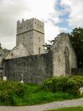 irlanda Parque nacional de Killarney Imagen de archivo libre de regalías
