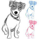 Irlandais Jack Russell Terrier Dog illustration stock
