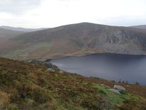 Irlandczyka Guinness Jeziorny Lough Tay w Wicklow górach Fotografia Royalty Free