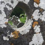 Irlande. Graveyard in dublin Royalty Free Stock Photos