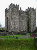 Irlandia Bunratty Obrazy Stock