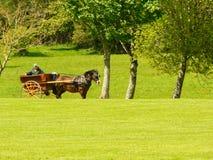Irlandia Killarney park narodowy Obraz Royalty Free