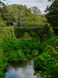 Irlandia Killarney park narodowy Obrazy Stock