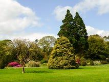 Irlandia Killarney park narodowy Zdjęcia Stock