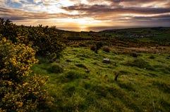 Irlandia krajobraz zdjęcia royalty free