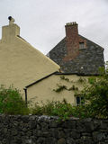 Irlandia ludu bunratty park Fotografia Royalty Free