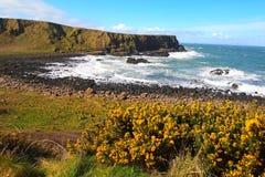 Irlandzka linia brzegowa Obrazy Stock