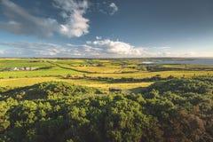 Irlandzki wieś krajobraz Drzewa, łąki obrazy royalty free