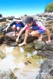 Irmã e irmão por um rockpool tropical Imagem de Stock Royalty Free