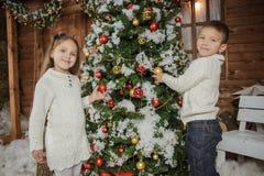 Irmã e irmão que decoram a árvore de Natal imagem de stock royalty free