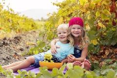 A irmã e o irmão felizes estão comendo uvas dentro Foto de Stock