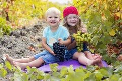 A irmã e o irmão felizes estão comendo uvas dentro Imagem de Stock Royalty Free