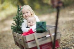 Irmão do bebê e irmã Pulled no vagão com árvore de Natal Imagem de Stock