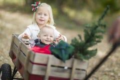 Irmão do bebê e irmã Pulled no vagão com árvore de Natal Foto de Stock Royalty Free