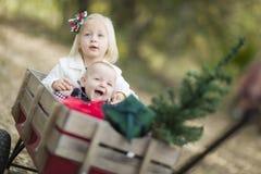 Irmão do bebê e irmã Pulled no vagão com árvore de Natal Foto de Stock