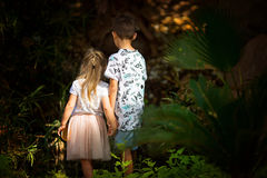Irmão e irmã em uma floresta feericamente foto de stock royalty free