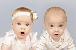 Irmão e irmã gêmeos do bebê Imagem de Stock Royalty Free