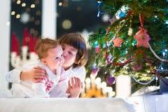 Irmão e sua irmã do bebê que jogam junto em uma árvore de Natal Foto de Stock