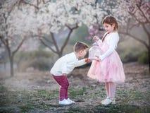Irmão mais novo e irmã que jogam no parque imagem de stock royalty free