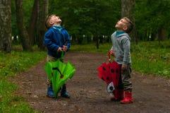 Irmãos gêmeos na floresta com guarda-chuvas Fotografia de Stock