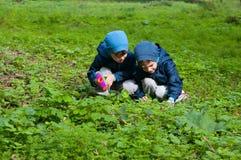 Irmãos gêmeos no prado Imagem de Stock