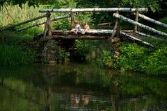 Irmãos gêmeos pequenos adoráveis que sentam-se na borda da ponte de madeira e que pescam no lago bonito Fotos de Stock Royalty Free