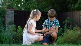 Irmãos pequenos que jogam com o gatinho desabrigado encontrado, o cuidado e o amor para animais vídeos de arquivo