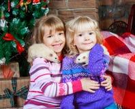 Irmãs com ratos fotos de stock