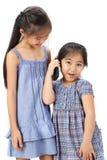 2 irmãs no fundo branco Fotografia de Stock Royalty Free
