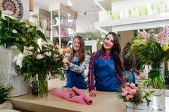 Irmãs que trabalham no florista fotos de stock