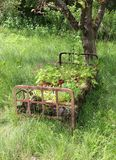 Iron bed frame under tree with flowers and plants. Rusty iron bed frame as garden design filled with pots, pants and flowers under a tree with wild grown grass Stock Images