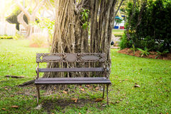 Iron bench in the park Stock Images