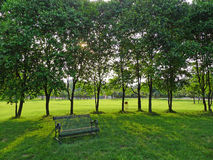 An iron bench with trees Stock Photos
