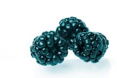 Iron berries Stock Photo