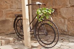 Iron bicycle with flower arrangement Stock Images