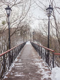 Iron bridge over a pond. In a winter day Royalty Free Stock Photos